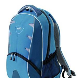 N17218P	Dicota BackPack Element Blue -