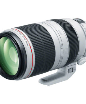 Canon Telephoto Zoom EF 100-400MM F4.5-5.6 L IS II USM9524B005AA
