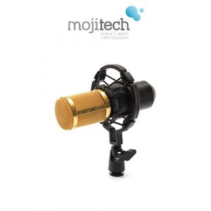 Professional Stereo Recording Microphone Condenser with 3.5mm Plug - BM800